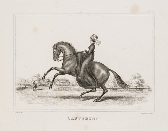 3: Adams (D.) Equestrian Exercises for Ladies and Gen