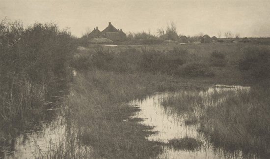 15: Peter Henry Emerson (1856-1936) The Fringe of the