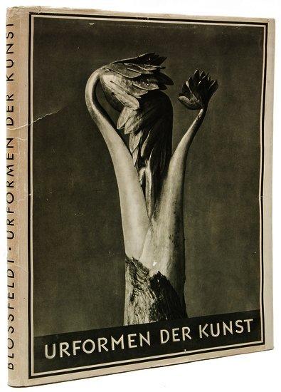 Blossfeldt (Karl) Urformen der Kunst: