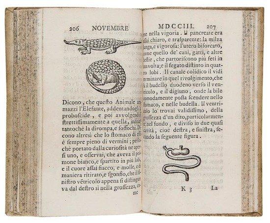 Borghesi (Giovanni) Lettera scritta da Pondisceri