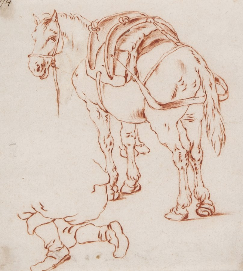 Dutch School (18th Century) Study of a horse with