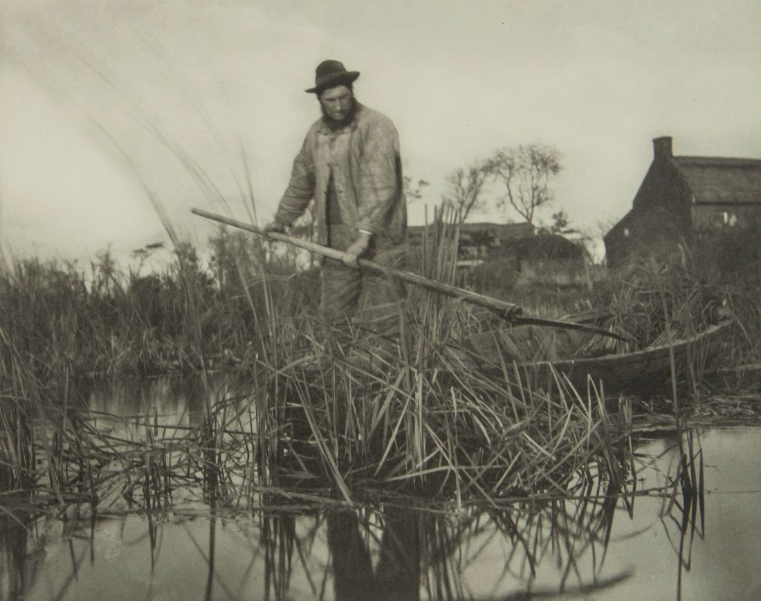 Peter Henry Emerson (1856-1936) - Cutting the Glad