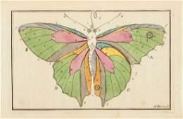 Harris Moses  The English Lepidoptera
