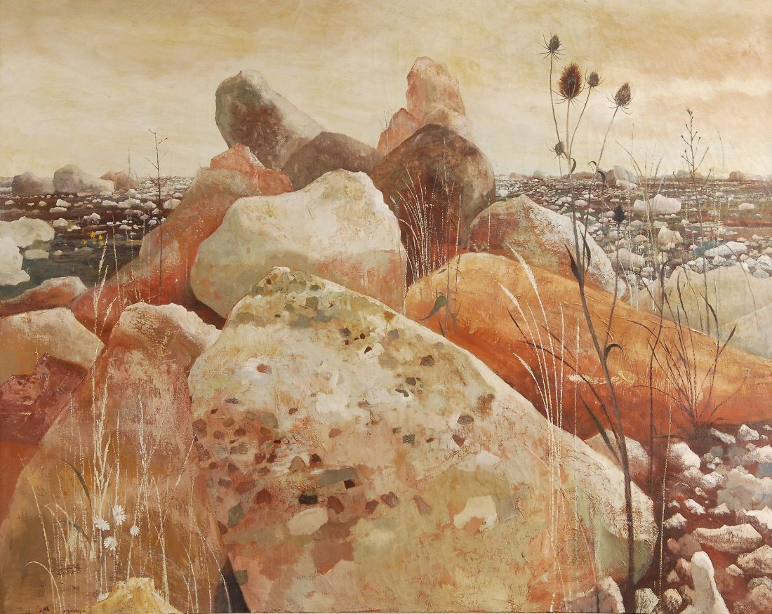 Anthony R. Cooke (b.1933) - Rocks with teasel