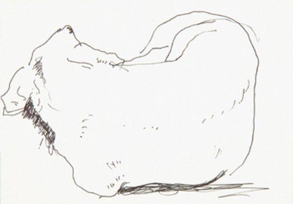1A: Hockney.Ink drawing of sleeping dachshund