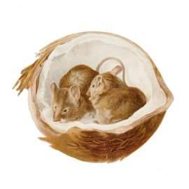 [Potter (Beatrix) - Two mice in a coconut],