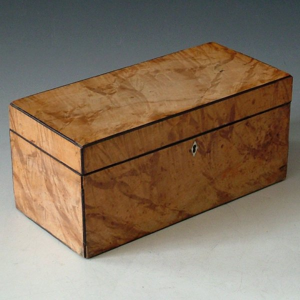 458: Regency satinwood tea caddy