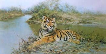 88: After David Shepherd - tiger in the sun, limited ed