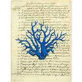 Italian School Hand Colored Engraving Of Blue Coral On