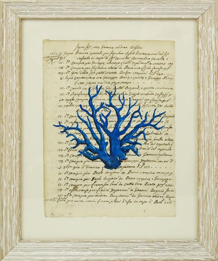 Italian School Hand Colored Engraving Of Blue Coral On - 2