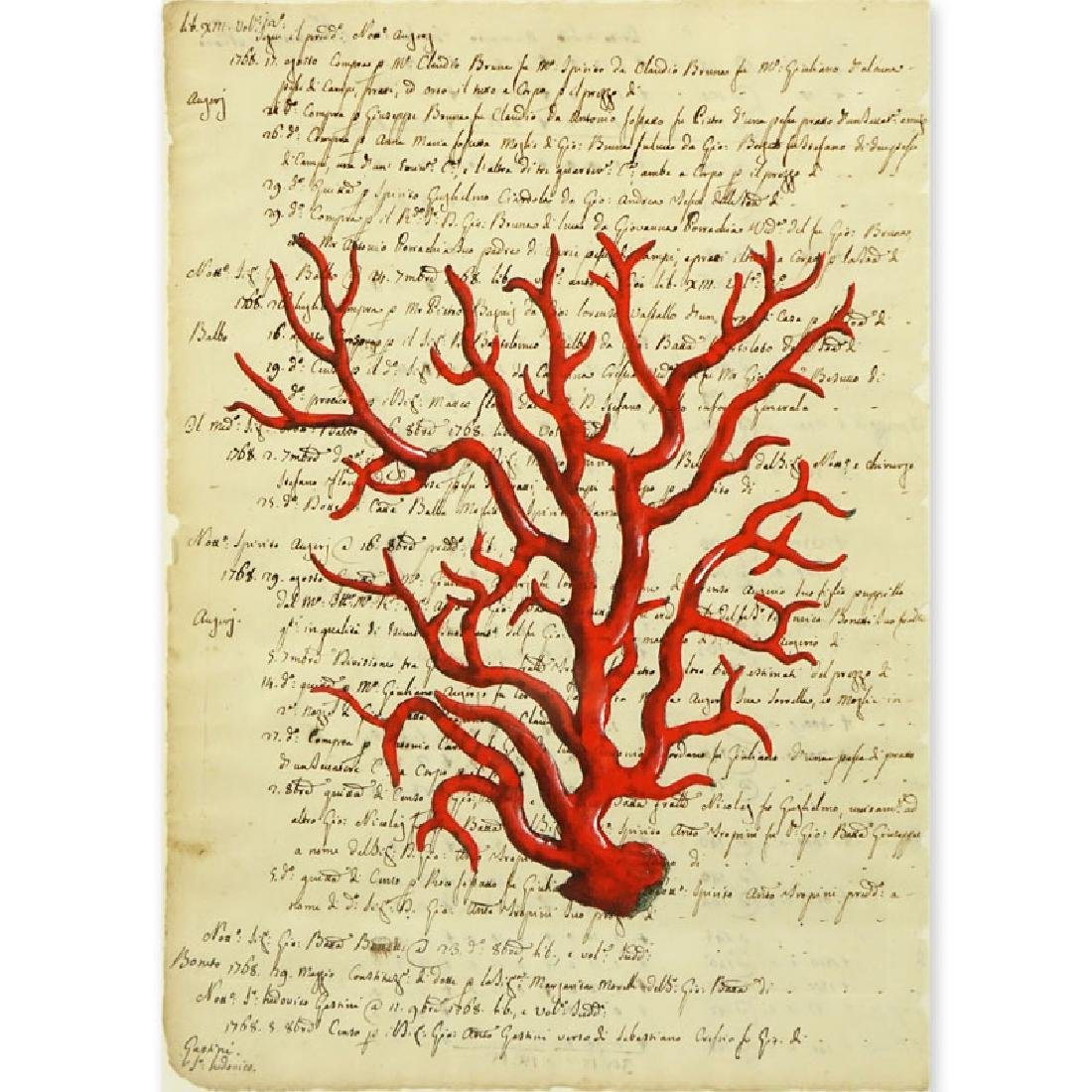 Italian School Hand Colored Engraving Of Red Coral On
