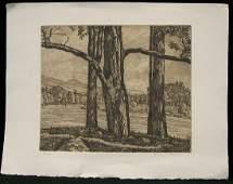 677: Luigi Lucioni Ltd Edition Etching Trees w Landscap