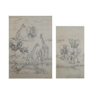 African Wildlife Pencil Drawings