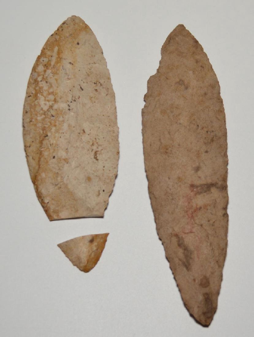 Native American Adena Blade / Turkey Tail Fulton - 2