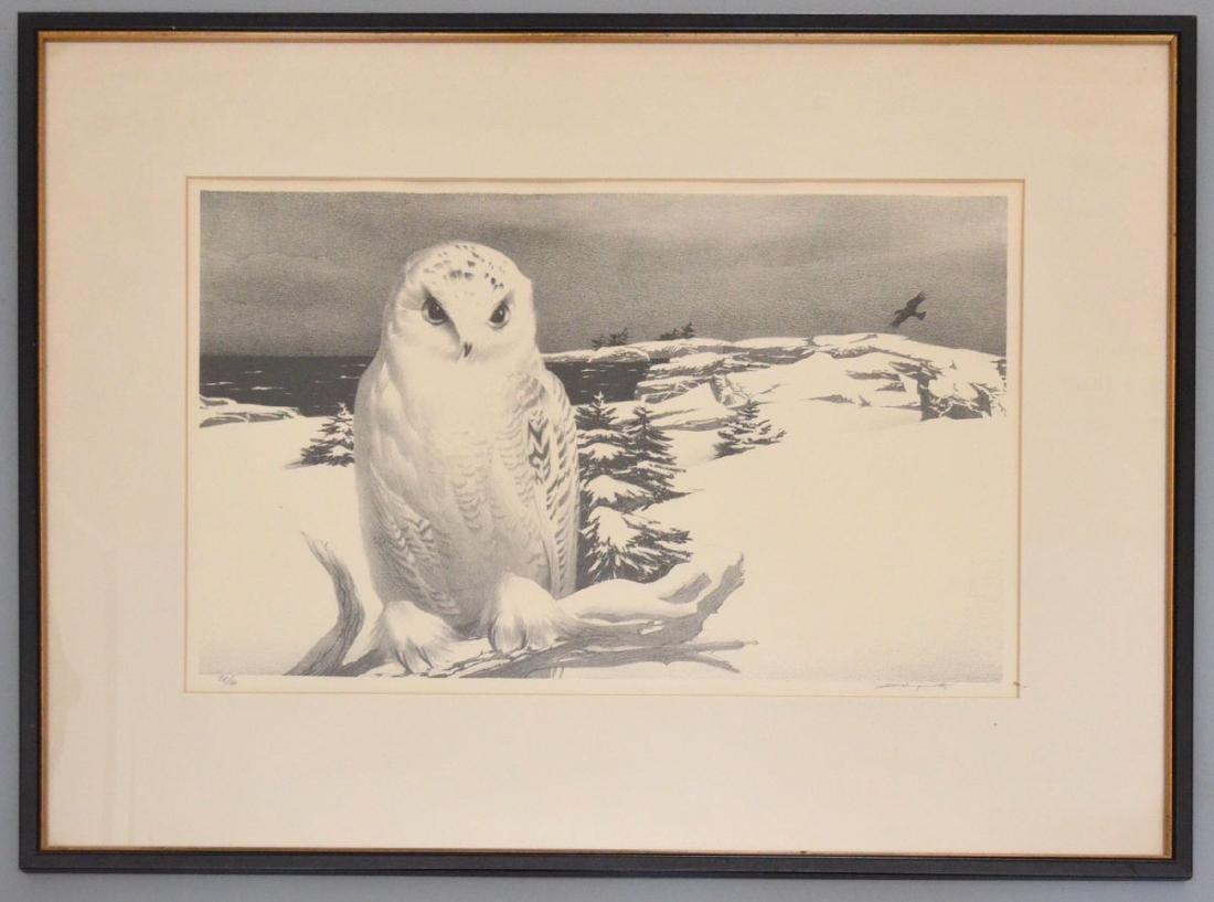 Stow Wengenroth Litho  Of An Owl