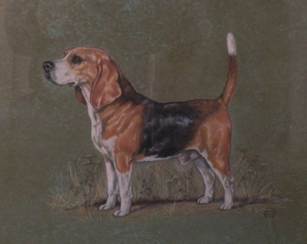 1962 Pastel Of An Adorable Beagle Signed Jean Mellin