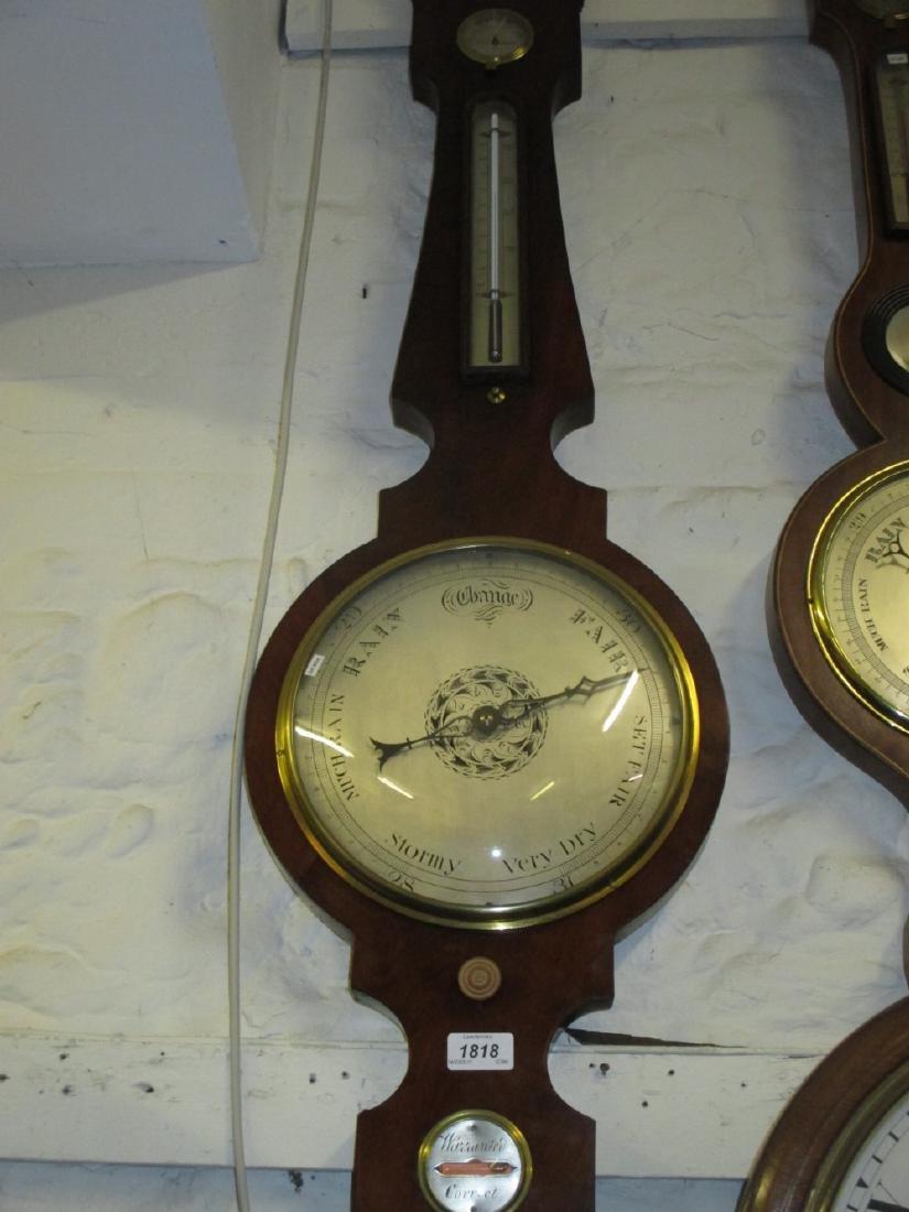 Early 19th Century mahogany four glass banjo shaped