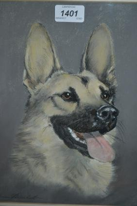 John Marshall, pastel, portrait of an Alsatian, signed,