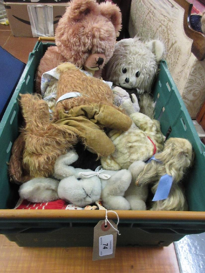 Box containing a quantity of teddy bears
