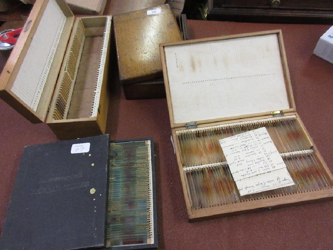 Large quantity of microscope slides housed in three