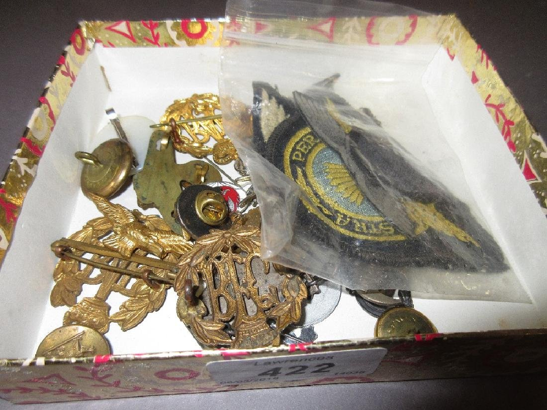 Collection of R.A.F. cap badges and airline badges