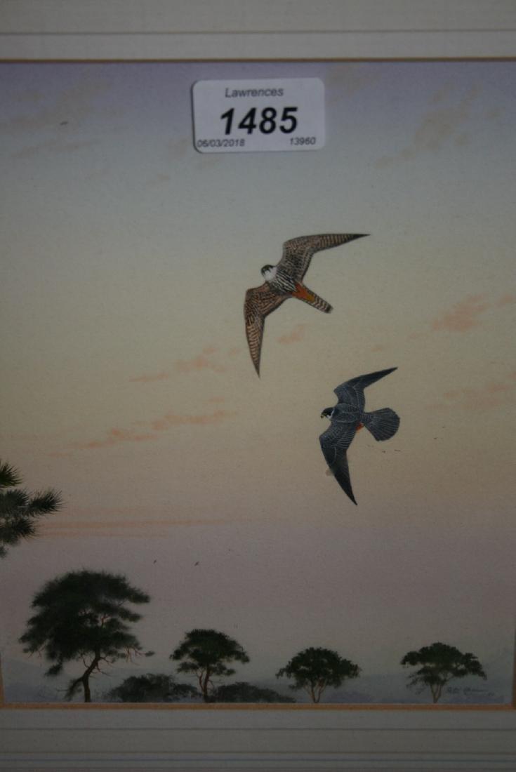 Peter Hayman, watercolour, hawks in flight, 9ins x