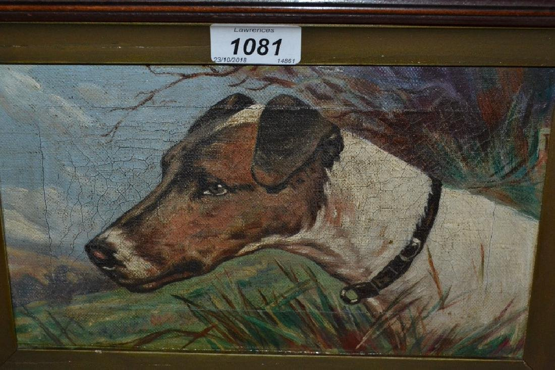 Late 19th Century oil on canvas, head study of a hound