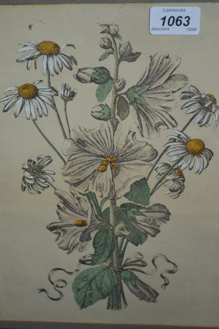 Pair of Redoute prints of roses and two other prints,