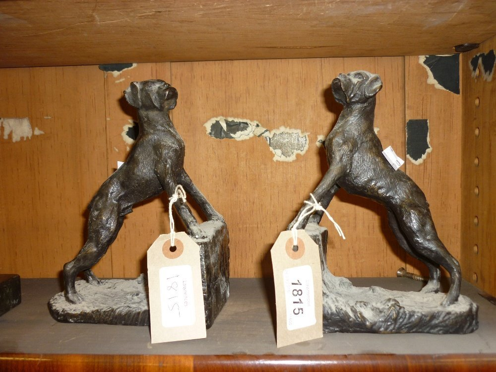 Pair of brown patinated bronze boxer dog bookend