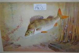 James Edwin Dean, watercolour, study of pike and roach,