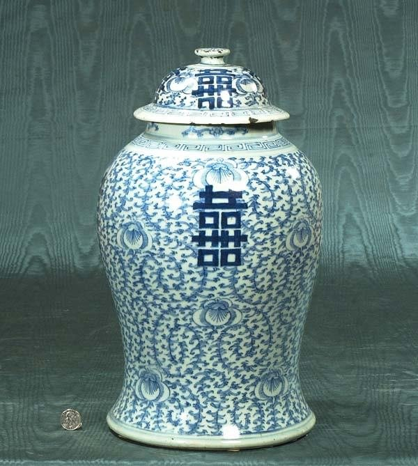 16: Blue and white Chinese porcelain ginger jar with do