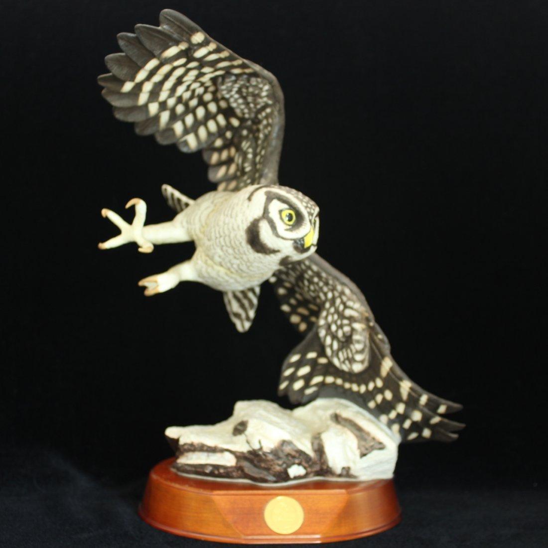 Porcelain Hawk Owl Figural