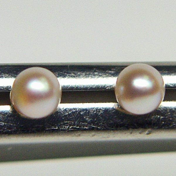 4020: 14KT 6mm Pearl Stud Earrings
