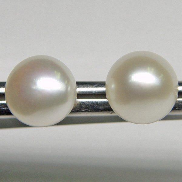 1019: 14KT 8.5mm Pearl Button Earrings