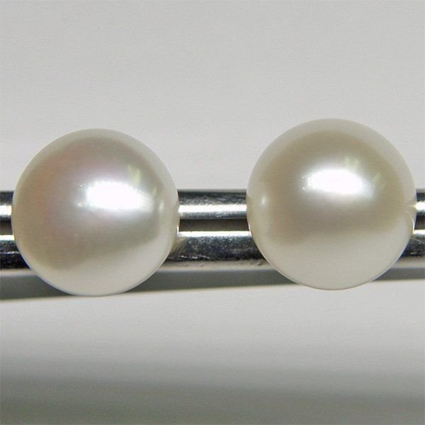1029: 14KT 8.5mm Pearl Button Earrings