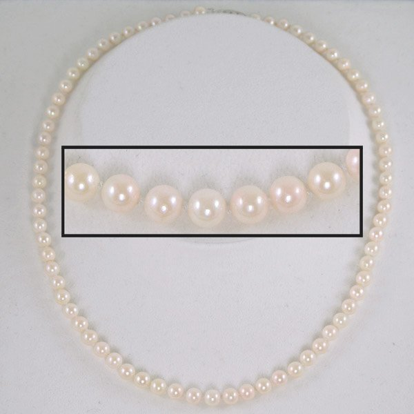 4017: 14KT Wht Gold 5.5-6mm Akoya Pearl Necklace 18in