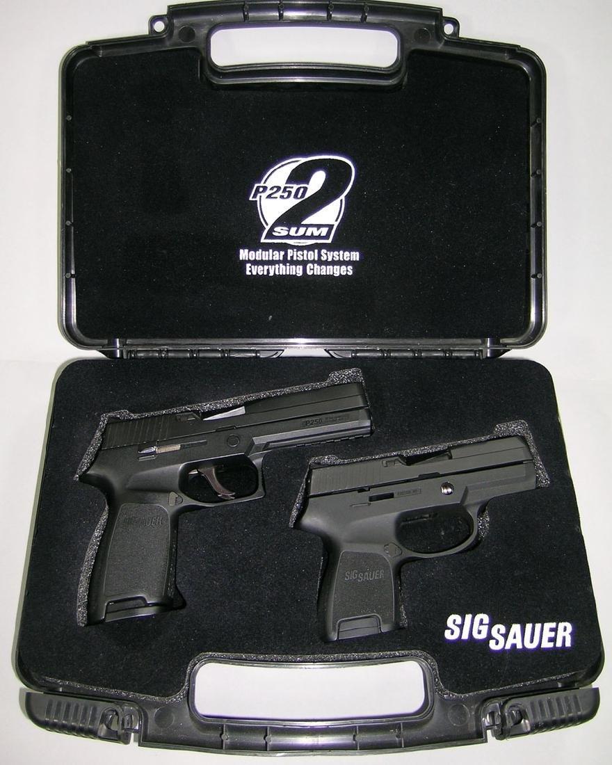 Sig Sauer, Model P250-2, Modular Pistol System