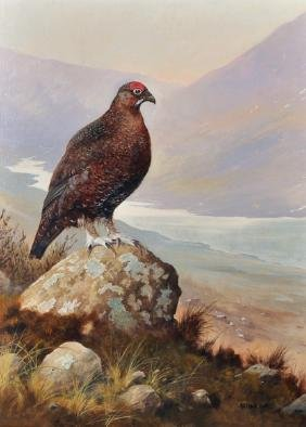 Arthur Lokie (1948-    ) British. 'Highland Grouse', in