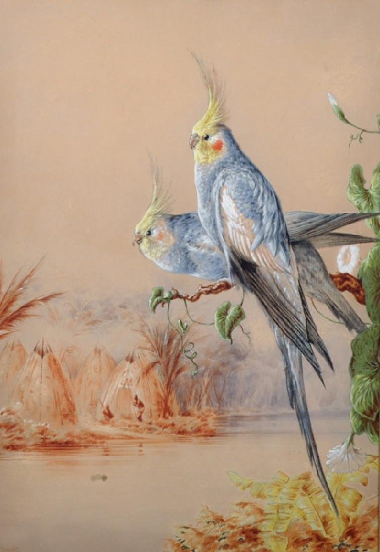 "Harry Bright (1846-1895) British. ""Cockatiels by a"