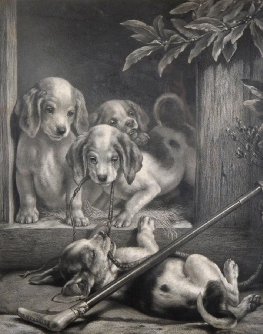 Samuel John Carter (1835-1892) British. Puppies Playing