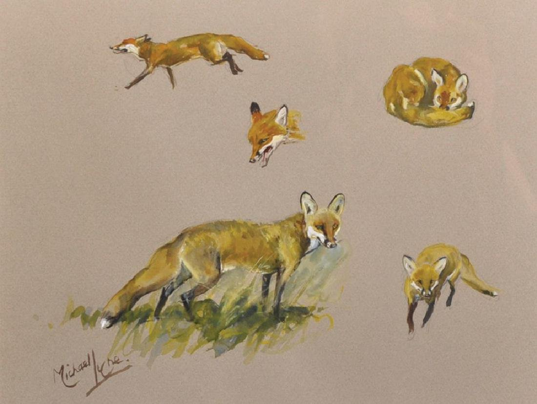 Michael Lyne (1912-1989) British. A Study of a Fox, in