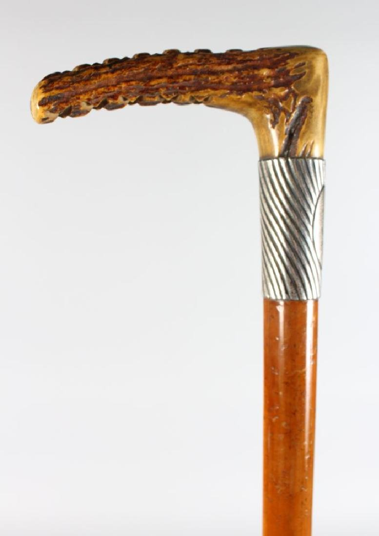 A CANE WITH WHIP, bone handle.