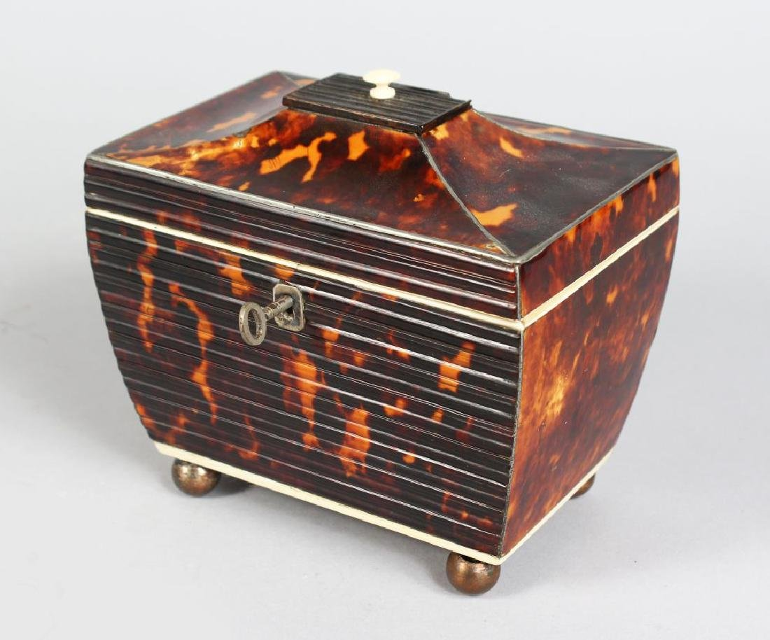 A GOOD SMALL REGENCY TORTOISESHELL TWO-DIVISION TEA