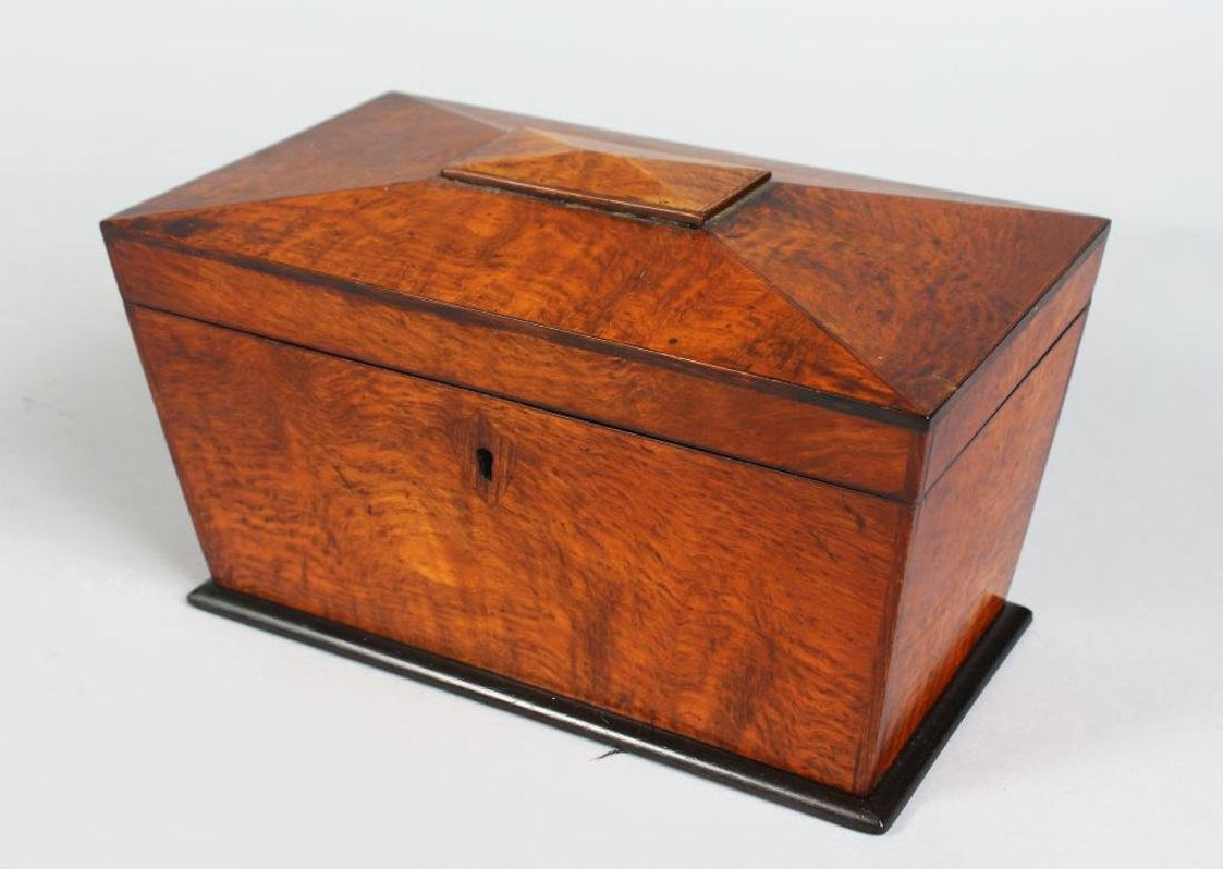 A 19TH CENTURY MULBERRY TWO-DIVISION TEA CADDY, with