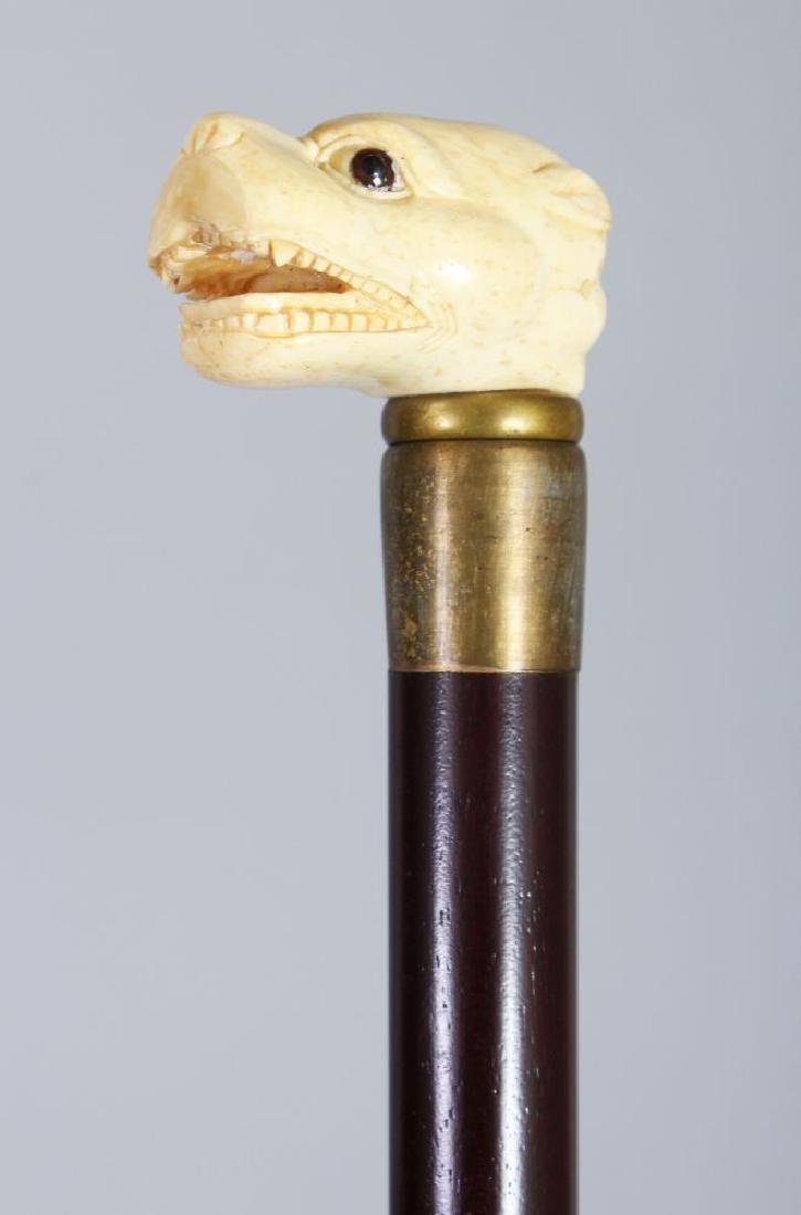 A WALKING STICK, the bone handle carved as a dogs head.