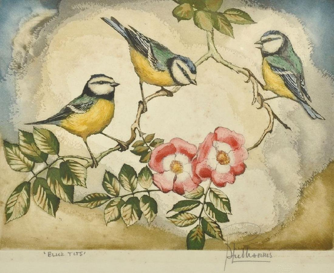 "20th Century English School. ""Blue Tits"", Lithograph,"