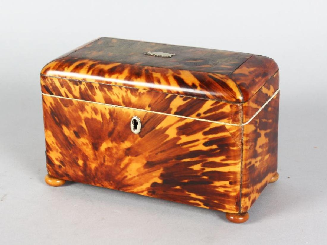 A LARGE REGENCY TORTOISESHELL TWO-DIVISION TEA CADDY on