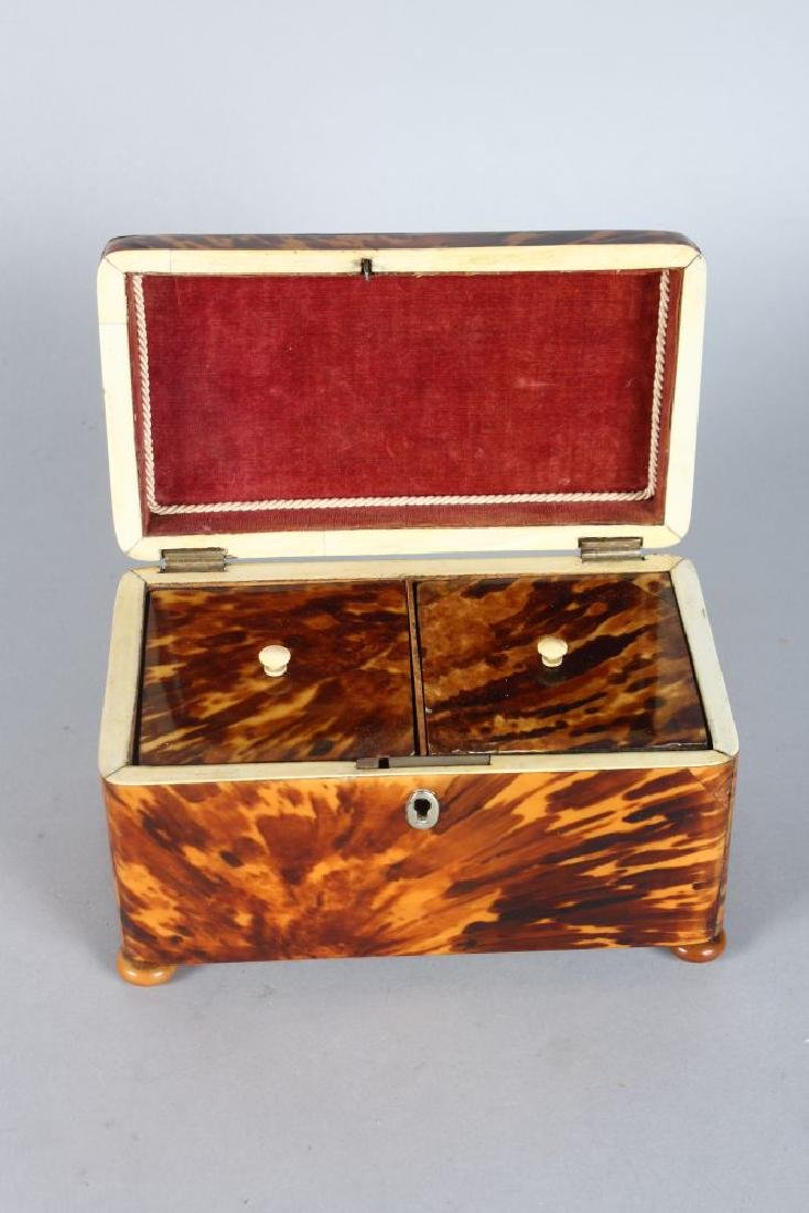 A LARGE REGENCY TORTOISESHELL TWO-DIVISION TEA CADDY on - 2