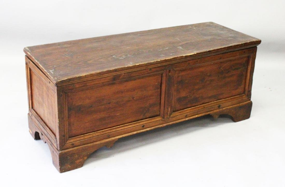 AN 18TH CENTURY COFFER, with plain top and two panels