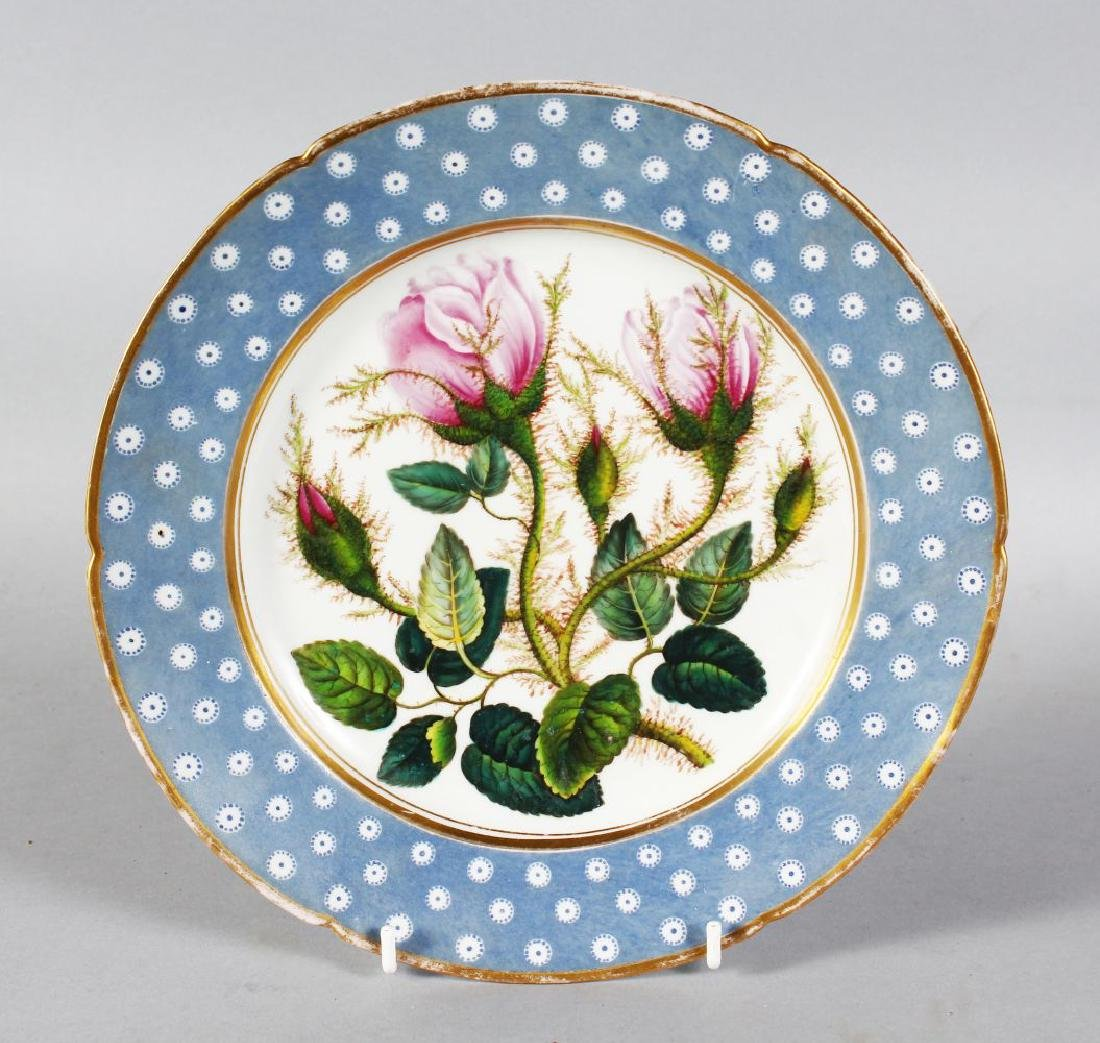 A DERBY PLATE, the centre painted with MOSS ROSEBUDS